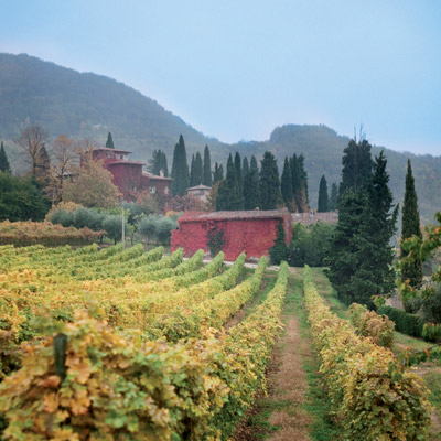 LIVE THE FINEST ITALIAN FOOD AND WINE EXPERIENCES